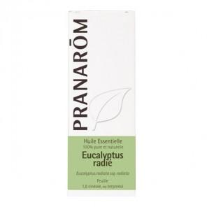 Pranarôm huile essentielle eucalyptus radié 10ml