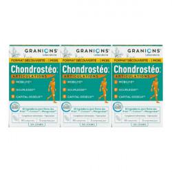 Granions chondrosteo articulations lot 3x90 comprimés