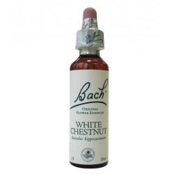 Fleurs de Bach N°35 - White Chestnut (marronnier blanc) - Sérénité - 20ml