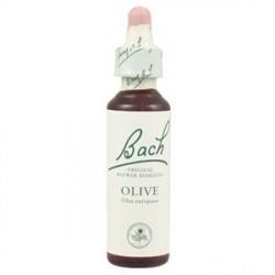 Fleurs de Bach N°23 - Olive - Dynamisme - 20ml